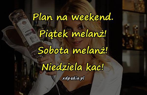 Plan na weekend. Piątek melanż! Sobota melanż! Niedziela kac!