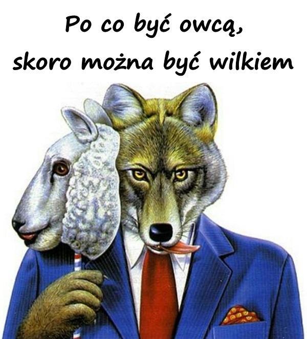 Po co być owcą, skoro można być wilkiem.