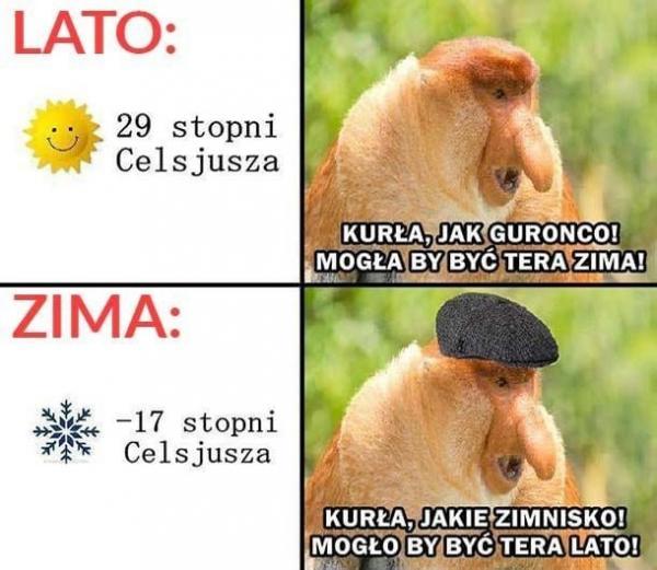 Pogodowy Janusz
