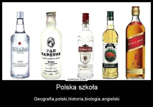 Polska szkoła: geografia - Finlandia polski - Pan Tadeusz historia - Sobieska biologia - Żubrówka angielski - Red Land