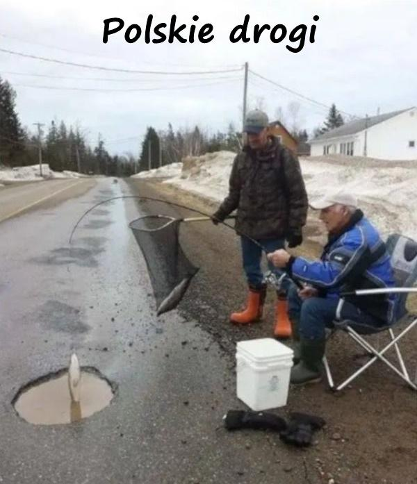 Polskie drogi