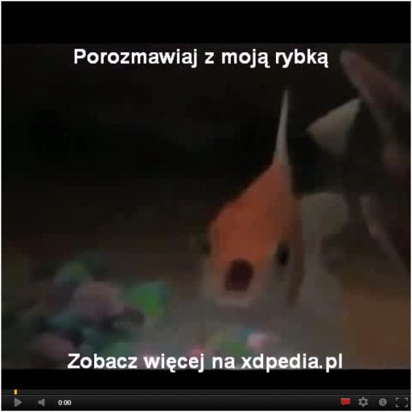 Porozmawiaj z moją rybką