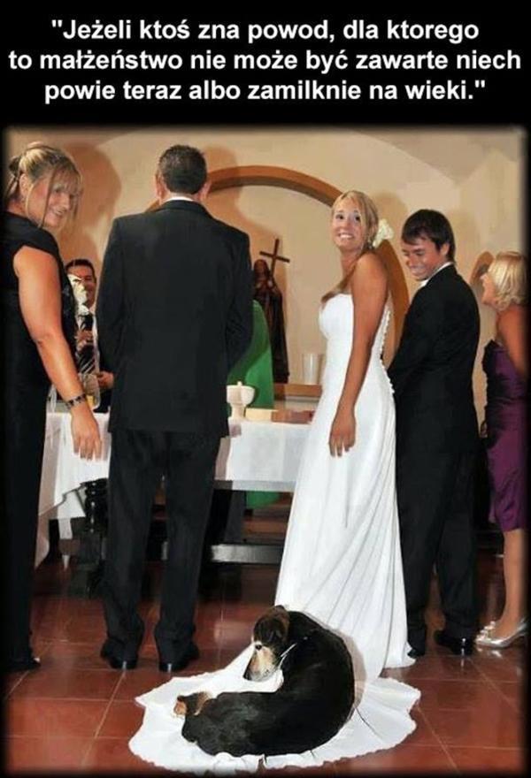 Jeśli ktoś zna powód dla którego to małżeństwo nie może być zawarte niech powie teraz albo zamilknie na wieki