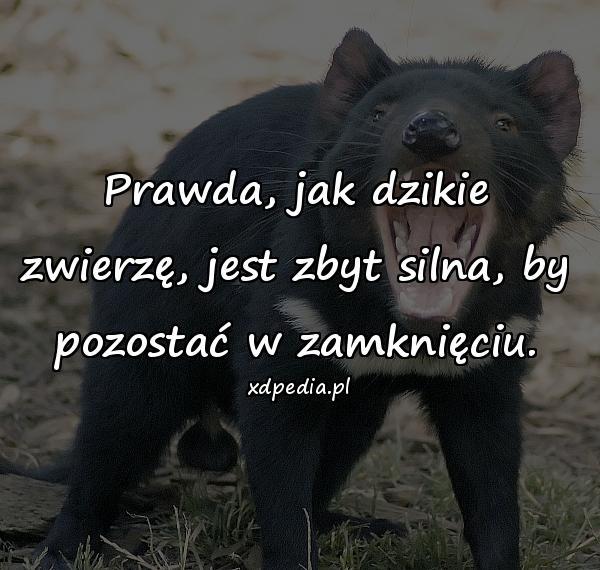 Prawda, jak dzikie zwierzę, jest zbyt silna, by pozostać w zamknięciu.