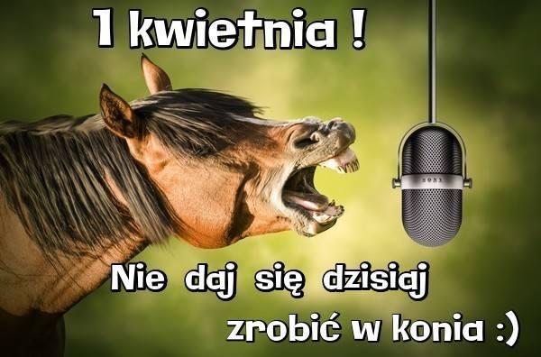 Prima Aprilis - Nie daj się dzisiaj zrobić w konia!