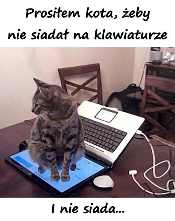 Prosiłem kota, żeby nie siadał na klawiaturze.