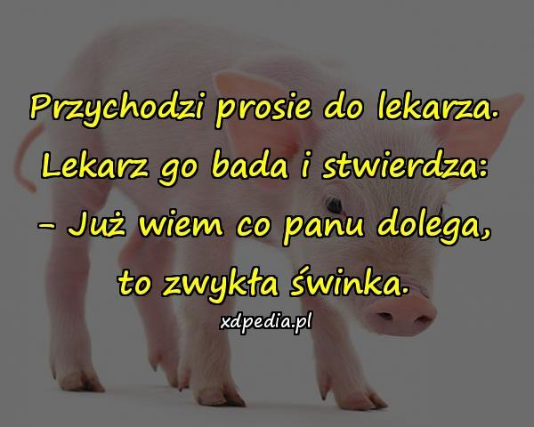 Przychodzi prosie do lekarza. Lekarz go bada i stwierdza: - Już wiem co panu dolega, to zwykła świnka.