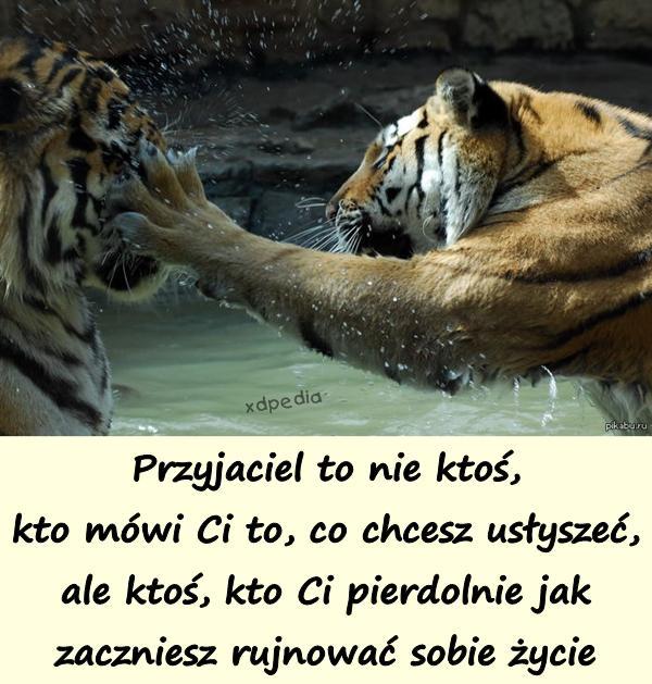 Przyjaciel to nie ktoś, kto mówi Ci to, co chcesz usłyszeć, ale ktoś, kto Ci pierdolnie jak zaczniesz rujnować sobie życie