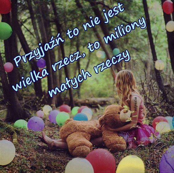 Przyjaźń to nie jest wielka rzecz, to miliony małych rzeczy
