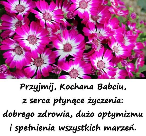 Przyjmij, Kochana Babciu, z serca płynące życzenia: dobrego zdrowia, dużo optymizmu i spełnienia wszystkich marzeń.