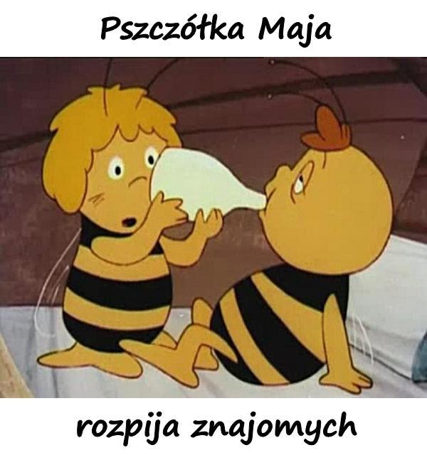 Pszczółka Maja rozpija znajomych
