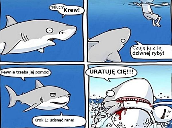 Rekiny ratują ludzi