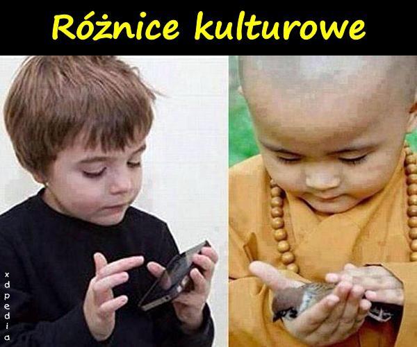 Różnice kulturowe