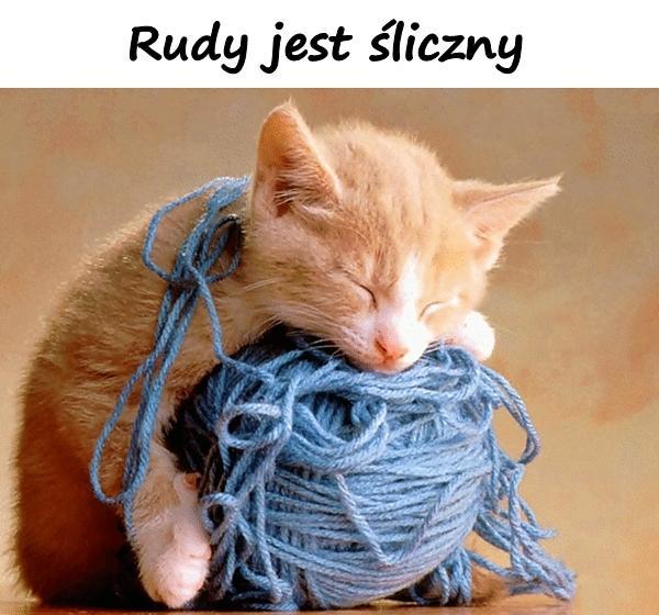 Rudy jest śliczny