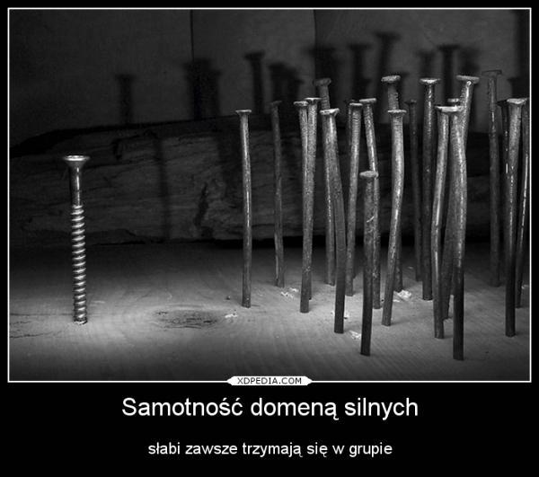 Samotność domeną silnych słabi zawsze trzymają się w grupie Tagi: samotność, demot, siła, demotywaotr, besty, grupa, słabość.