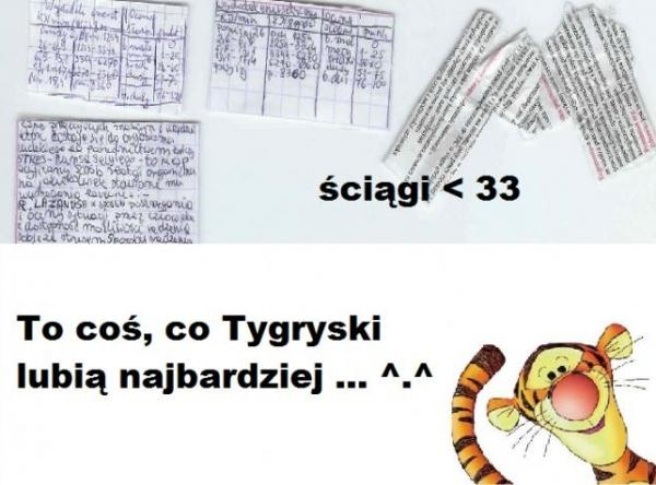 Ściągi to coś co Tygryski lubią najbardziej... ^^