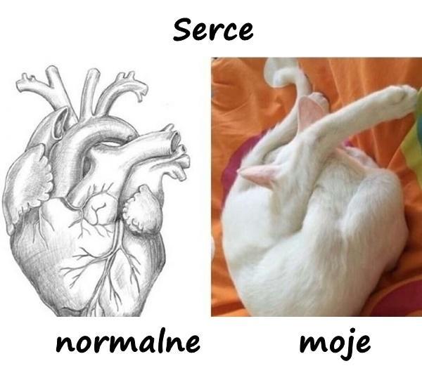Serce - normalne vs. moje