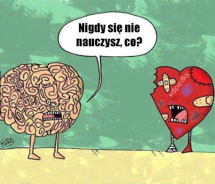 Serce vs. rozum - nigdy się nie nauczysz, co?