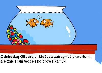 śmieszne rybki