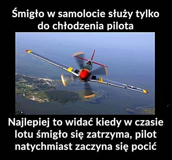 Śmigło w samolocie służy tylko do chłodzenia pilota. Najlepiej to widać kiedy w czasie lotu śmigło się zatrzyma, pilot natychmiast zaczyna się pocić.
