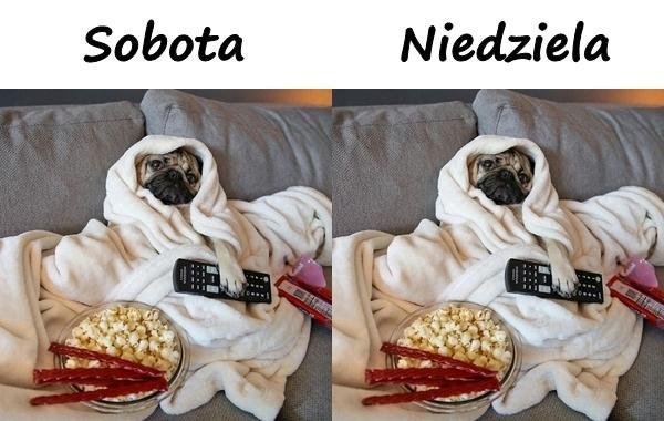 Sobota i Niedziela