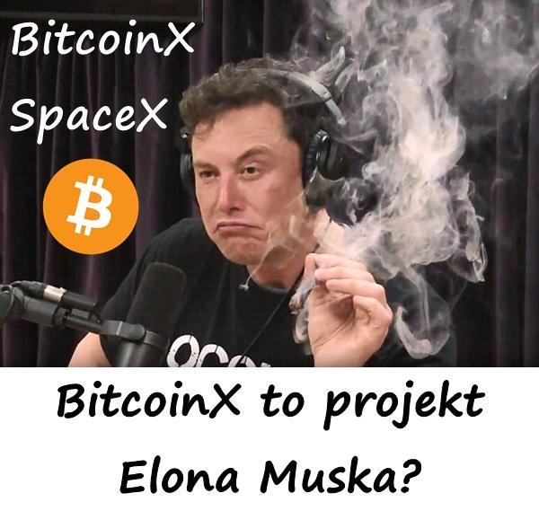 SpaceX i BitcoinX BitcoinX to projekt Elona Muska?