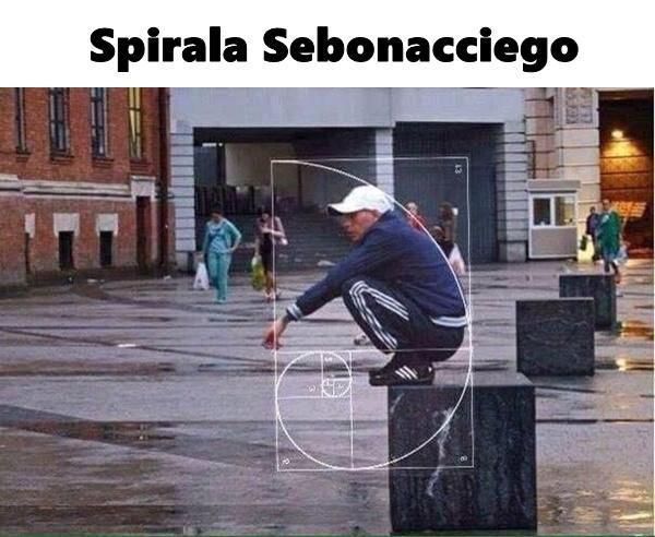 Spirala Sebonacciego