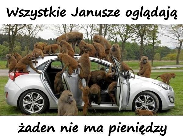 Wszystkie Janusze oglądają, żaden nie ma pieniędzy.