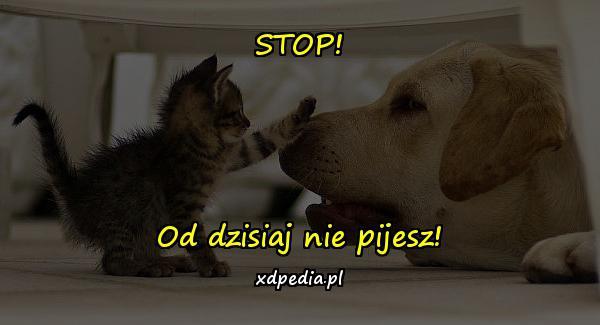 STOP! Od dzisiaj nie pijesz!