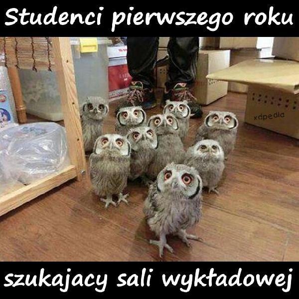 Studenci pierwszego roku szukajacy sali wykładowej