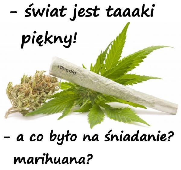 Świat jest taaaki piękny! Marihuana?