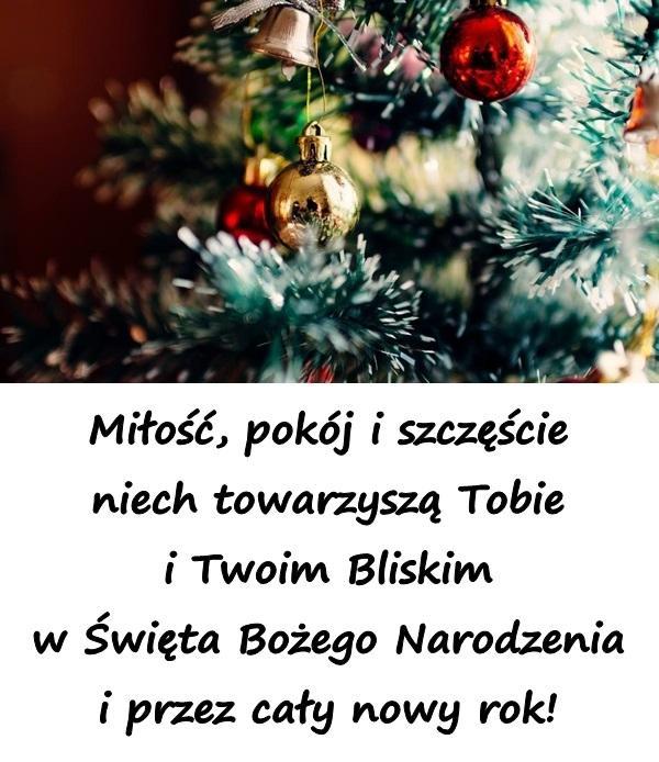 Miłość, pokój i szczęście niech towarzyszą Tobie i Twoim Bliskim w Święta Bożego Narodzenia i przez cały nowy rok!