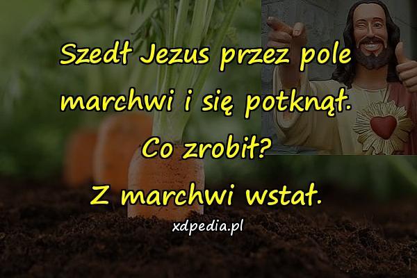 Szedł Jezus przez pole marchwi i się potknął. Co zrobił? Z marchwi wstał.