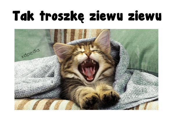 Tak troszkę ziewu ziewu Tagi: kot, memy, mem, późno, słodziak, besty, ziew, ziewu, spać, ziewanie.
