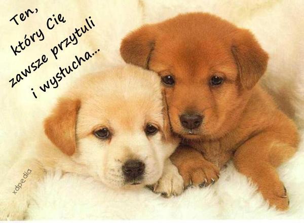 Ten, który Cię zawsze przytuli i wysłucha...