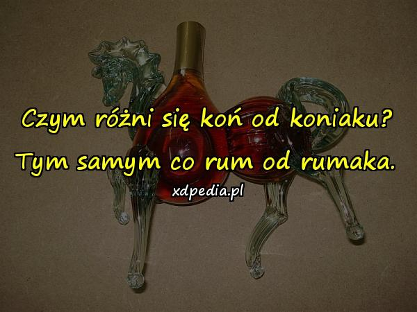 Czym różni się koń od koniaku? Tym samym co rum od rumaka.