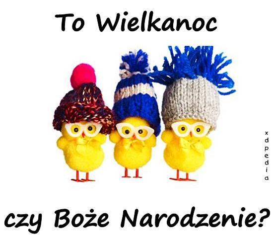 to_wielkanoc_czy_boze_narodzenie_11660.j