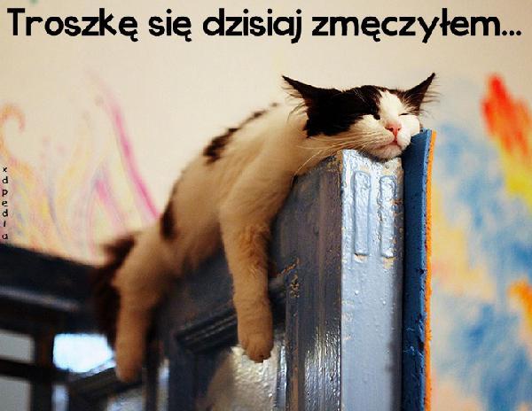 Troszkę się dzisiaj zmęczyłem...