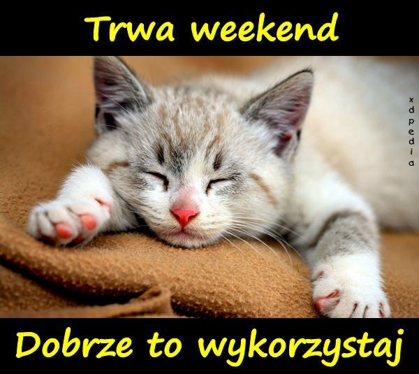 Trwa weekend. Dobrze to wykorzystaj.