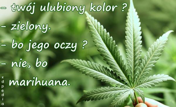 - twój ulubiony kolor? - zielony. - bo jego oczy? - nie, bo marihuana.