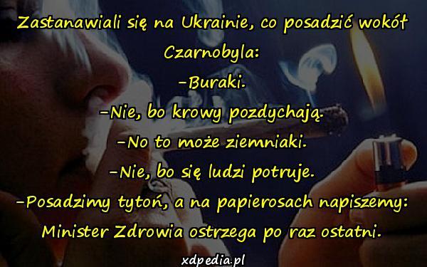 Zastanawiali się na Ukrainie, co posadzić wokół Czarnobyla: -Buraki. -Nie, bo krowy pozdychają. -No to może ziemniaki. -Nie, bo się ludzi potruje. -Posadzimy tytoń, a na papierosach napiszemy: Minister Zdrowia ostrzega po raz ostatni.