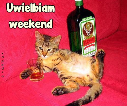Uwielbiam weekend...