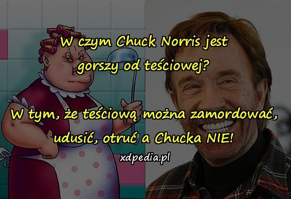 W czym Chuck Norris jest gorszy od teściowej? W tym, że teściową można zamordować, udusić, otruć a Chucka NIE!