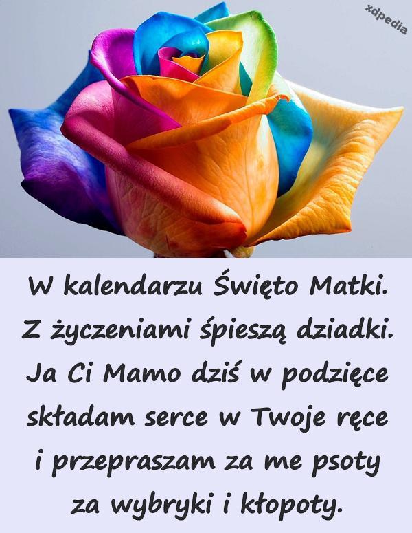 życzenia Na Dzień Matki 26maja Demot Memy życzenia Z