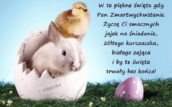 W te piękne święta gdy Pan Zmartwychwstanie. Życzę Ci smacznych jajek na śniadanie, żółtego kurczaczka, białego zająca i by te święta trwały bez końca!
