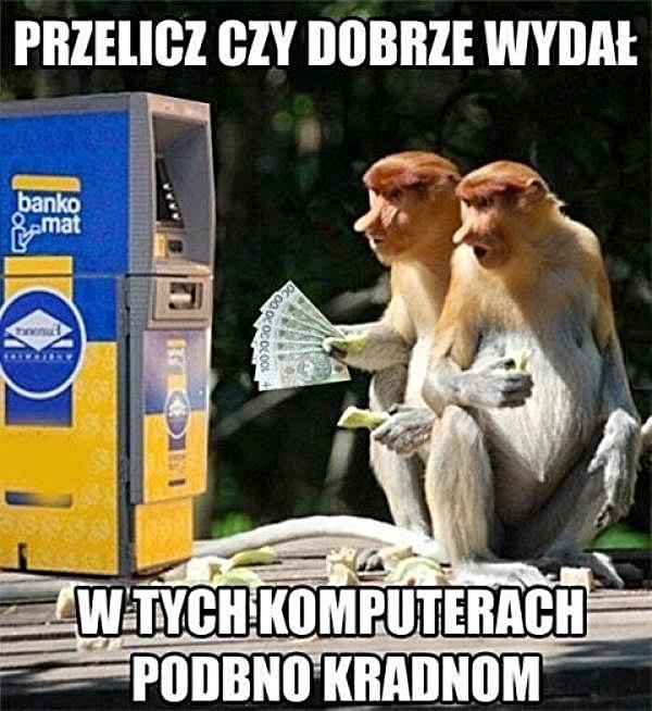 śmieszne Obrazki śmieszne Teksty Humor Besty Janusz Xdpedia