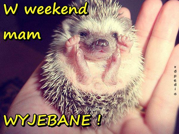 W weekend mam WYJEBANE!