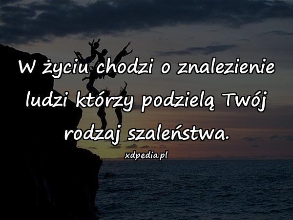 W życiu chodzi o znalezienie ludzi którzy podzielą Twój rodzaj szaleństwa.