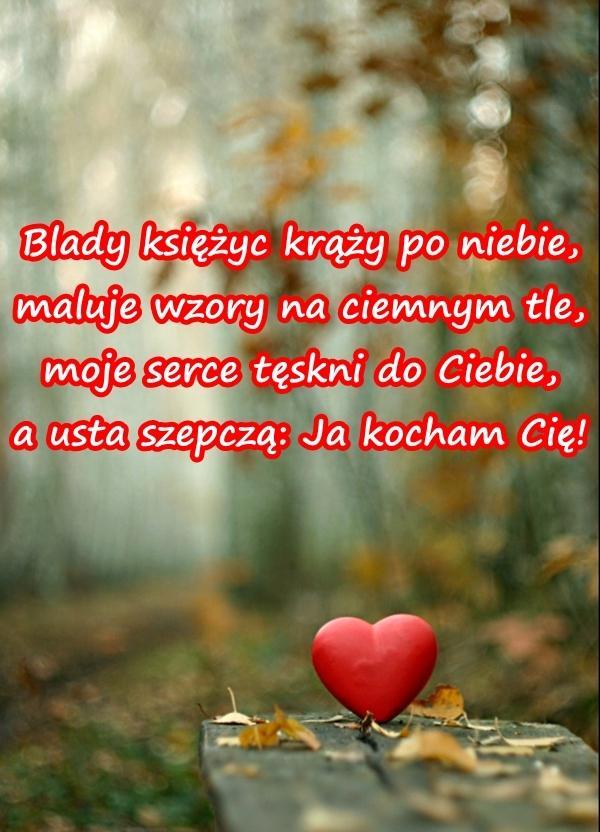Kocham 14lutego Wierszyki Walentynkowe Mem Wierszyki Na