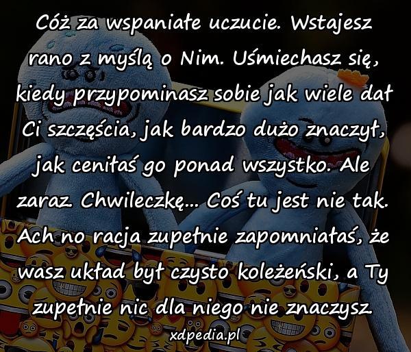 Koleżeństwo Szczęście Cytaty Obrazki Sentencje Xdpedia